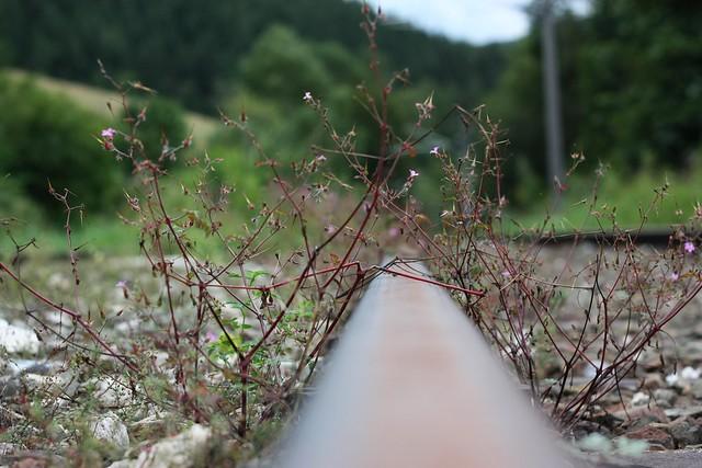 [091/365] Stahl | Erzbergbahn (Fotoserie II)