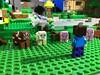 Woodrow Village Minecraft