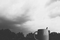 Summer Rain (B/W)