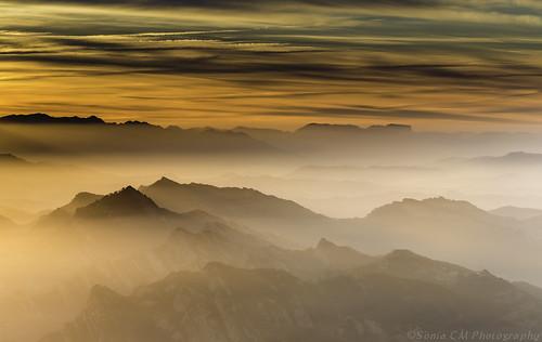 Misty Moment....