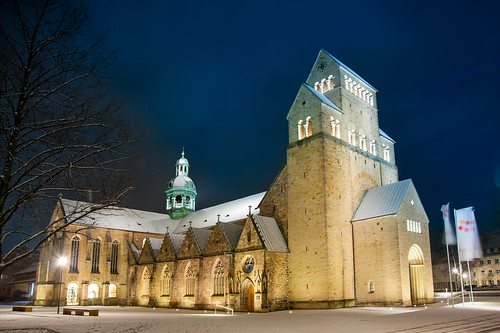 Der Hildesheimer Dom