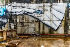 REFLECTED BICYCLE [KILKENNY CITY]-115836