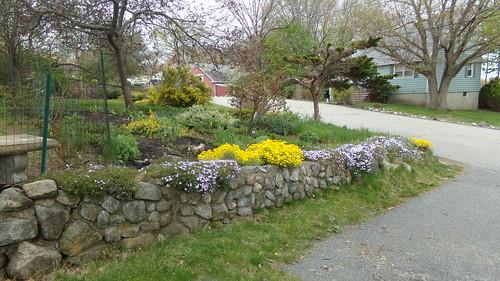 gardenapr13th 035
