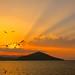 Flight to the Sun *ExpLorE* by Panos Kanderes