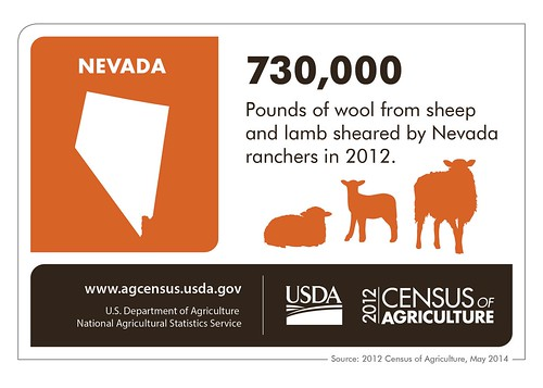 Sheep are just part of a dynamic Nevada livestock sector.  Be sure to check back next week for another state highlight from the 2012 Census of Agriculture.