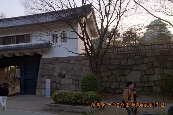 日本大阪城公園梅林城天守閣3D光之陣00