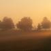 morning by jawadelayachi