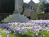 Spring at St Mary with St Alban Church