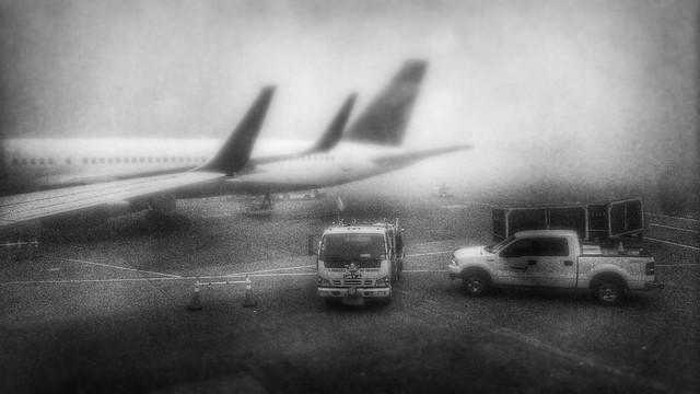 Fog at the Seattle Airport