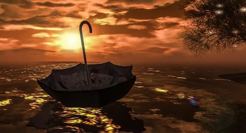 Dream, explore, discover