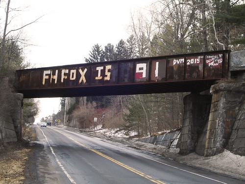 The bridge over Route 366 as updated last year. Photo courtesy Dr. Fox's public Facebook page.