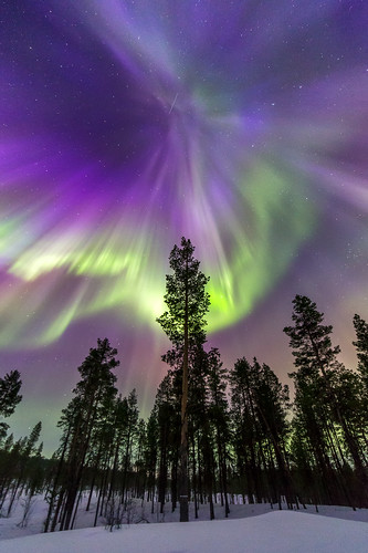 sweden arctic aurora auroraborealis