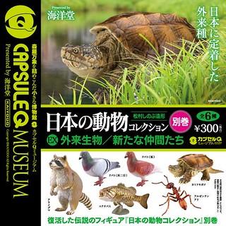 海洋堂 膠囊Q博物館 日本的動物 第9彈(別巻) 外來生物篇