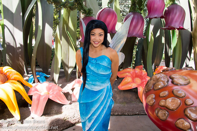 Meeting the Fairies in Pixie Hollow