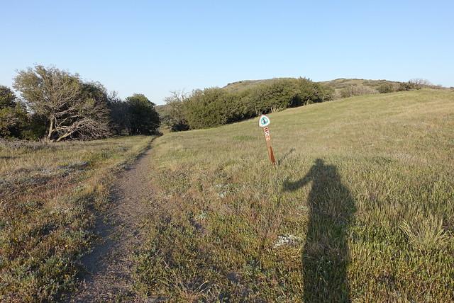 Ridgeline, m462