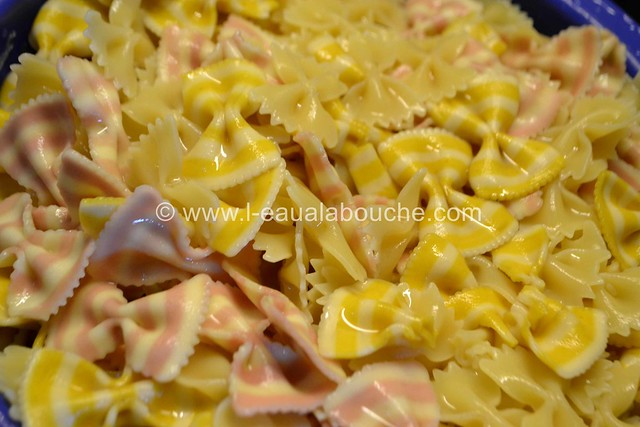 Cassolette de Crevettes et Coquillages ©  Ana Luthi Tous droits réservés 00010
