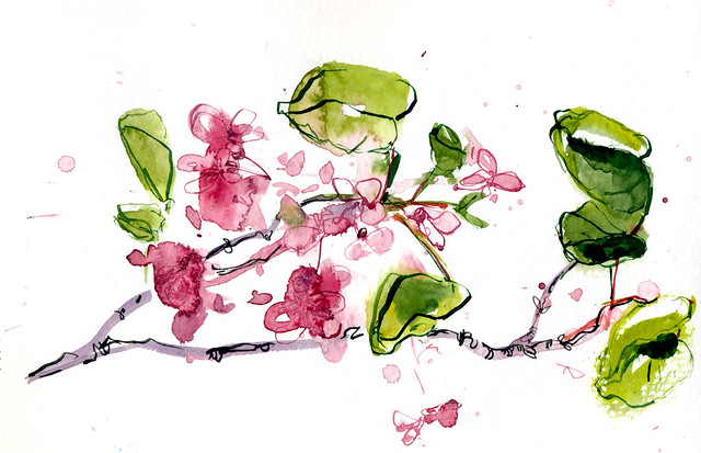 Sketchbook #95: Flowers on a hike