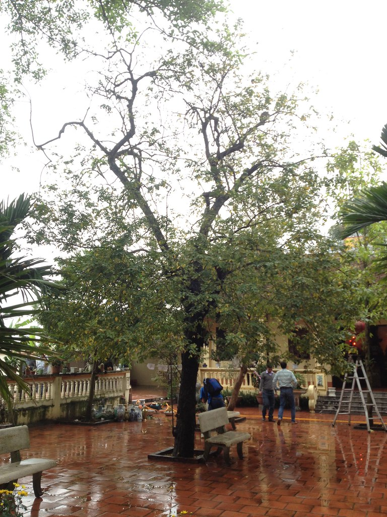 Co Phap Pagoda (8)