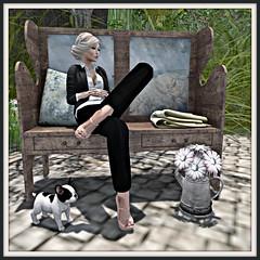 21 Shoe Essenz LosAngeles - FREE daisy pot FREE bench Kalopsia- coldLogic outfit theisenn & booker