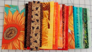 The fabrics I put together