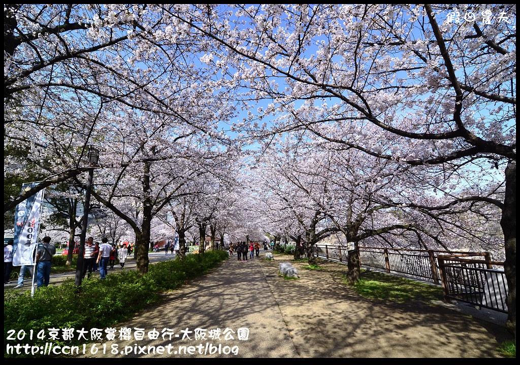 2014京都大阪賞櫻自由行-大阪城公園DSC_1736