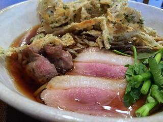 Soba topped with sliced grilled ducks and deep-fried burdock #2 from Tsukada Bokujo @ Nishi Shinbasi