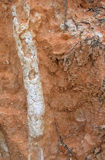 brick stains