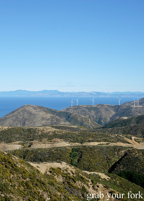 Wind turbines during the Seal Coast Safari, Wellington
