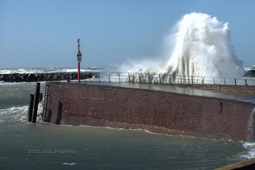 Big Wave Scheveningen