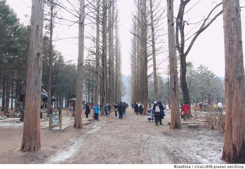 韓國 旅遊 韓國好玩 韓國 南怡島 韓劇景點 冬季戀歌場景 南怡島26
