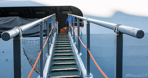 Stairs leading to the deck