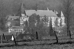 317 - Lucheux - Somme - Photo of Warluzel