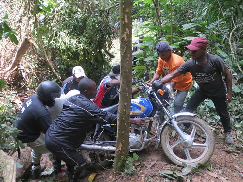 All hands to push motorbikes around fallen tree