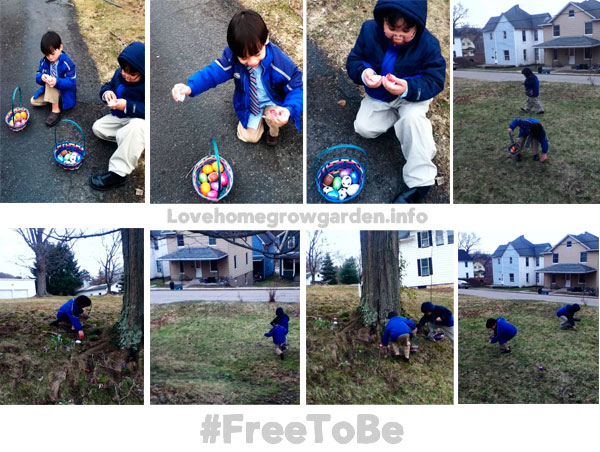 freetobeeasteregghunting