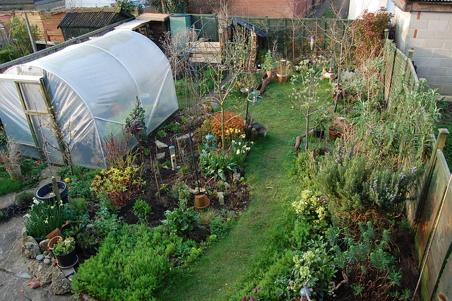 Looking down on the back garden from an upstairs window
