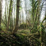 Walk from Fulwood to Preston 10 Mar 2015