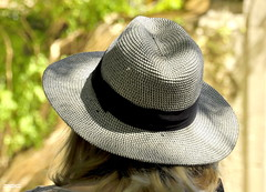 agriculture(0.0), straw(0.0), cap(0.0), clothing(1.0), sun hat(1.0), fedora(1.0), hat(1.0), headgear(1.0),