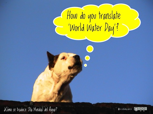 How do you translate 'World Water Day'?  = ¿Cómo se traduce 'Día Mundial del Agua?' @UNW_WWD @UN_Water #roofdog #wateris