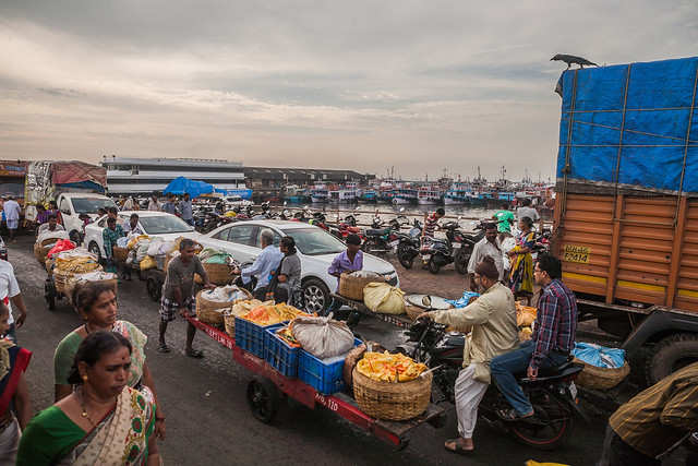 Fish market in Mumbai, India