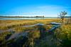 Blythburgh Mudflats