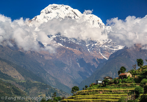 travel nepal color nature beautiful horizontal rural landscape scenery colorful asia terrace outdoor scenic peaceful annapurnacircuit annapurna tranquil himalayas breathtaking gandaki terracedfield annapurnasouth landruk annapurnaconservationarea landuruk