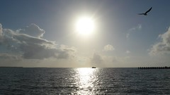 Belize Sunrise - P1140119