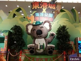 CIRCLEG 等埋我先玩喎 回歸原點 繪圖 新都城 MCP 小熊 東港城 海洋公園 樹熊 袋鼠 貓CAFE 南灣 玩在棋中 BOARDGAME 香香雞 (13)