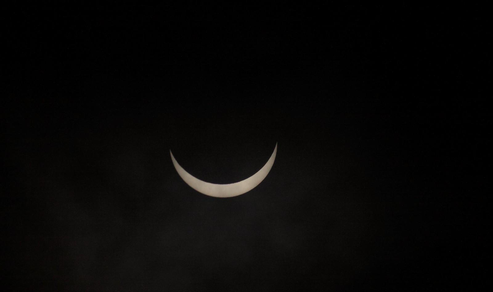 sun31