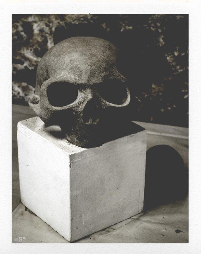 Le crâne 2009/2013.