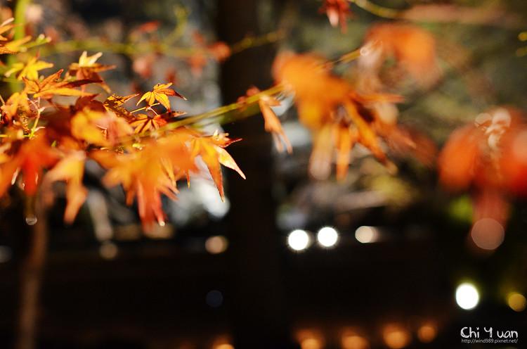 嵐山寶嚴22.jpg
