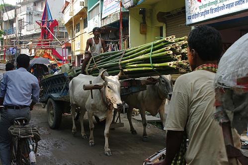 17- Janakpur Mithila Nepal