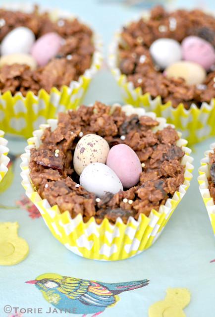Gluten free berry cherry chocolate nest 2