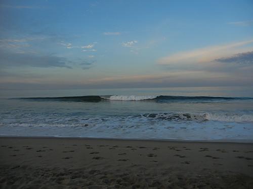 DSCN1824 Seascape Beach in Aptos, March 2015