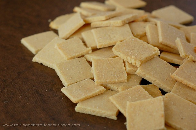 Simple & Quick Homemade Crackers :: Gluten Free w/ Grain Free Option